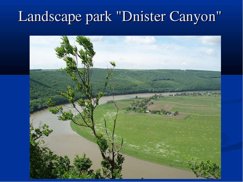 "Landscape park ""Dnister Canyon"""