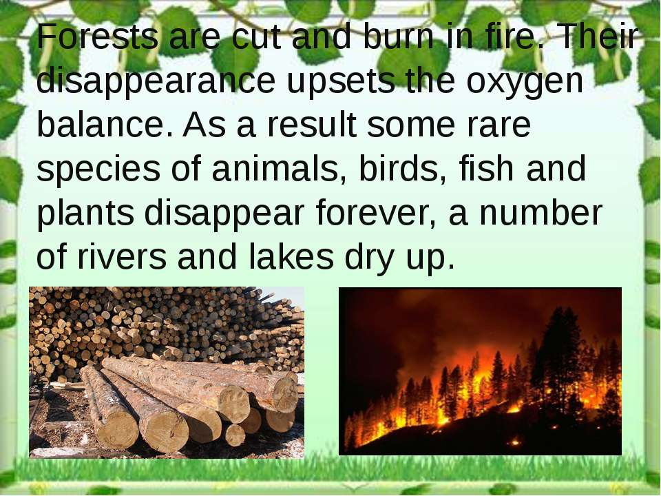 Forests are cut and burn in fire. Their disappearance upsets the oxygen balan...