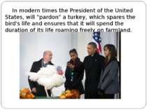 "In modern times the President of the United States, will ""pardon"" a turkey, w..."