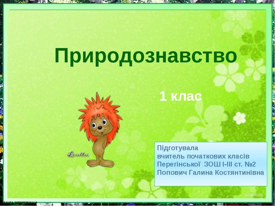 Природознавство Підготувала вчитель початкових класів Перегінської ЗОШ I-III ...