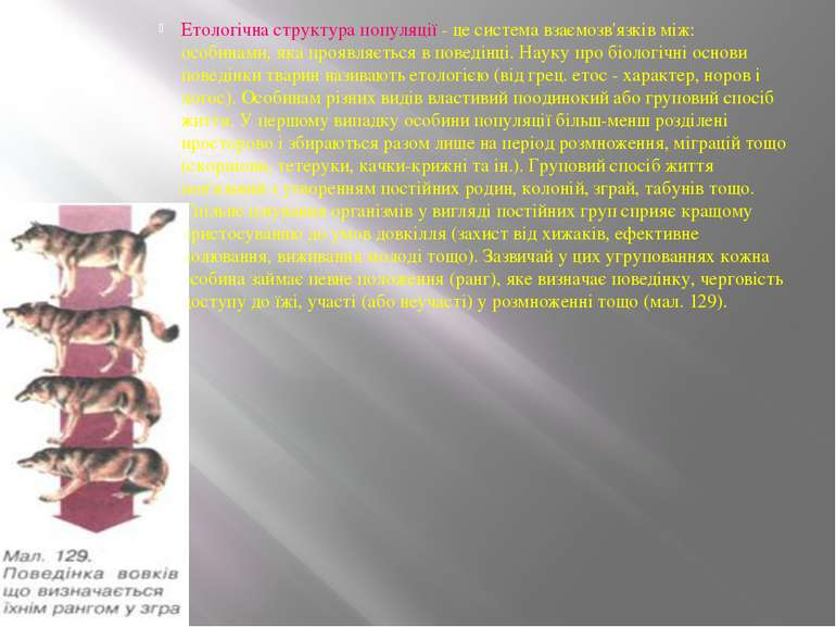 Етологічна структура популяції - це система взаємозв'язків між: особинами, як...