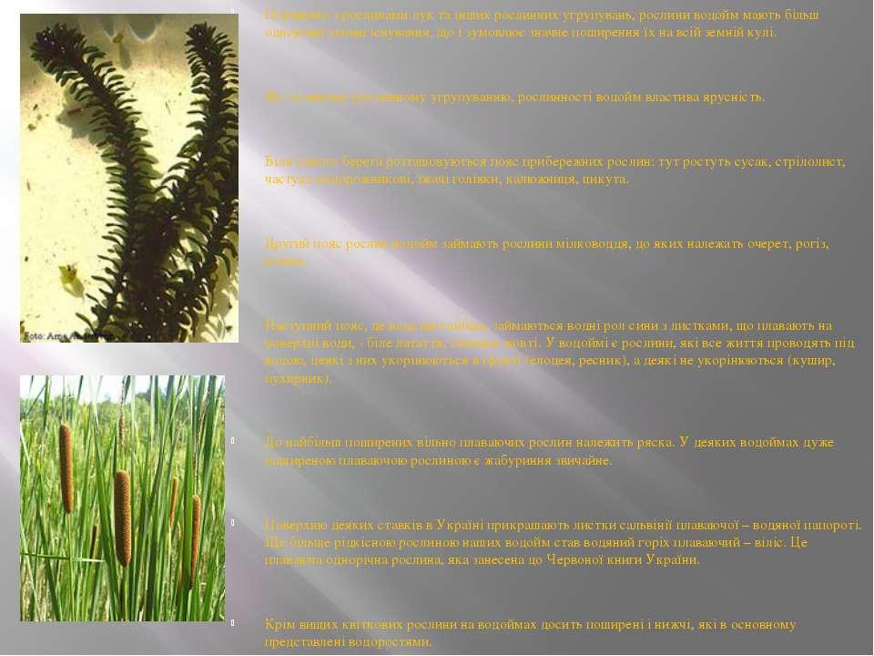 Порівняно з рослинами лук та інших рослинних угрупувань, рослини водойм мають...