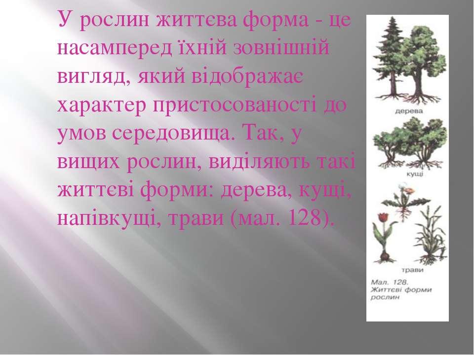 У рослин життєва форма - це насамперед їхній зовнішній вигляд, який відобража...