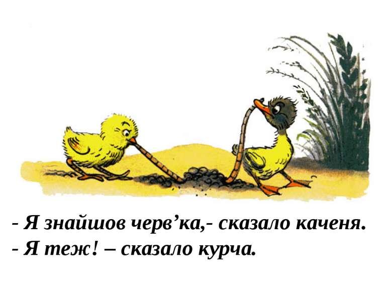 - Я знайшов черв'ка,- сказало каченя. - Я теж! – сказало курча.