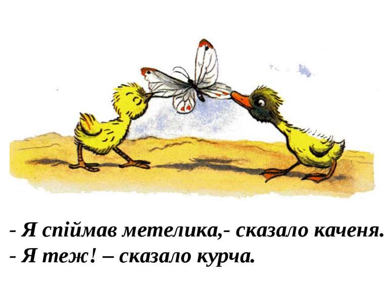 - Я спіймав метелика,- сказало каченя. - Я теж! – сказало курча.