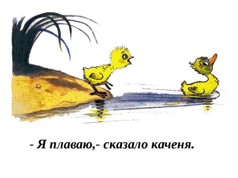 - Я плаваю,- сказало каченя.