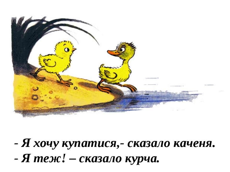 - Я хочу купатися,- сказало каченя. - Я теж! – сказало курча.