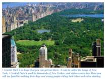 • Central Park is so huge that you can get lost there. It can be called the l...