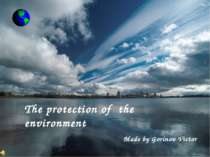 """The protection of the environment"