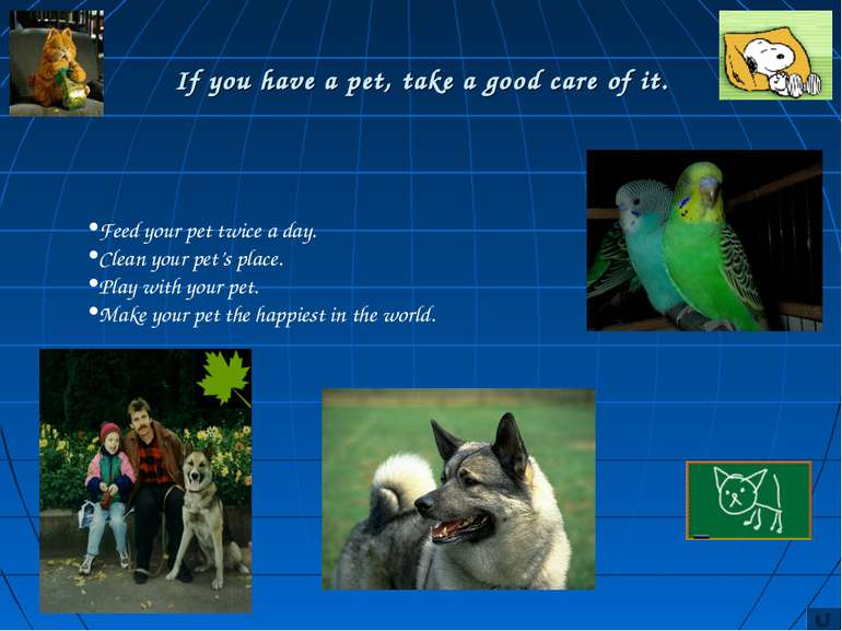 If you have a pet, take a good care of it. Feed your pet twice a day. Clean y...