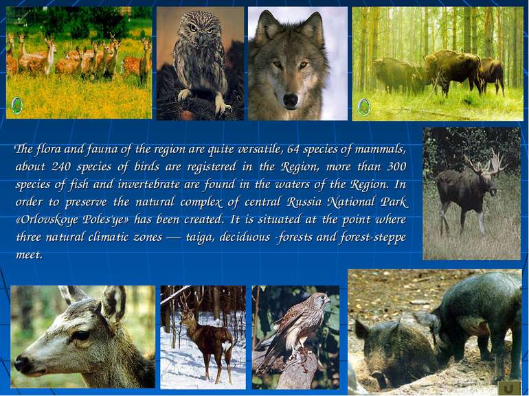 The flora and fauna of the region are quite versatile, 64 species of mammals,...