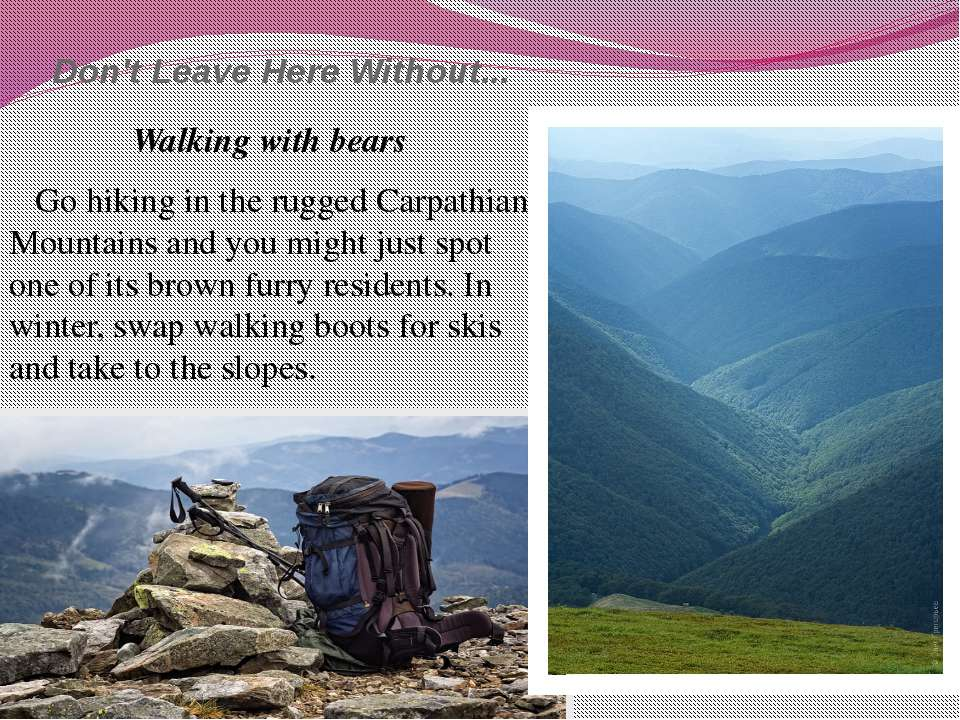 Don't Leave Here Without... Walking with bears Go hiking in the rugged Carpat...