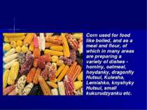 Corn used for food like boiled, and as a meal and flour, of which in many are...