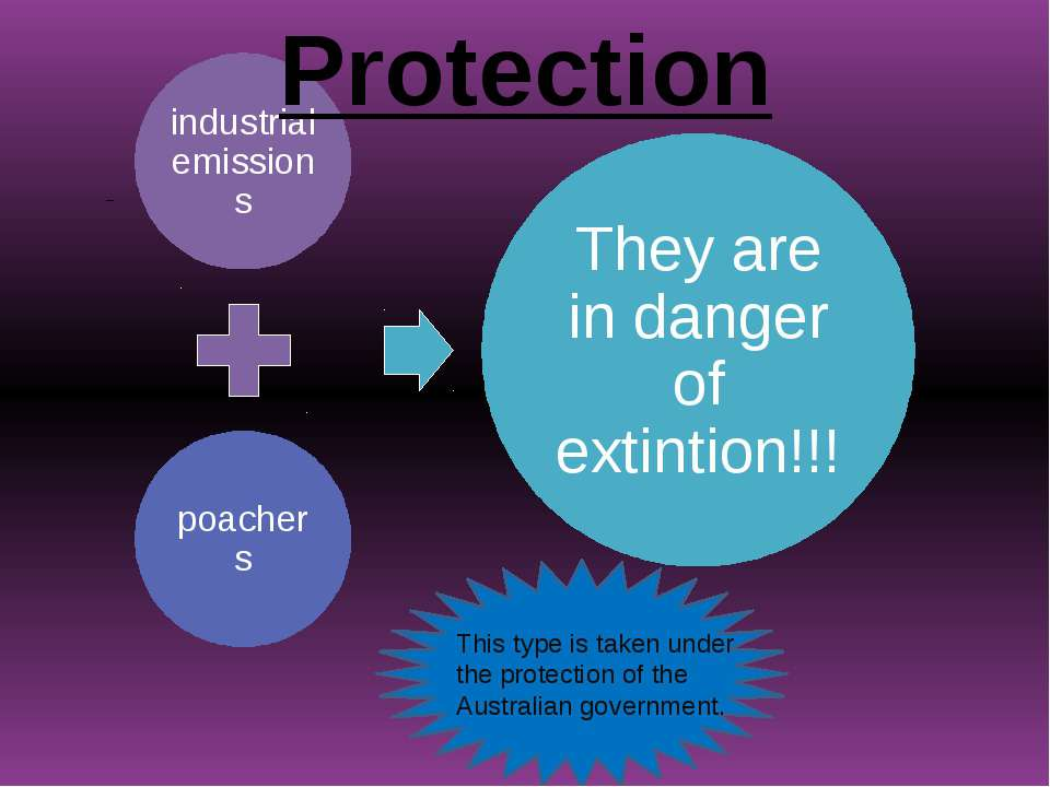 Protection This type is taken under the protection of the Australian government.