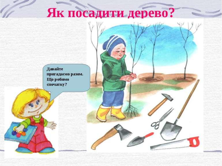 Як посадити дерево? Давайте пригадаємо разом. Що робимо спочатку?