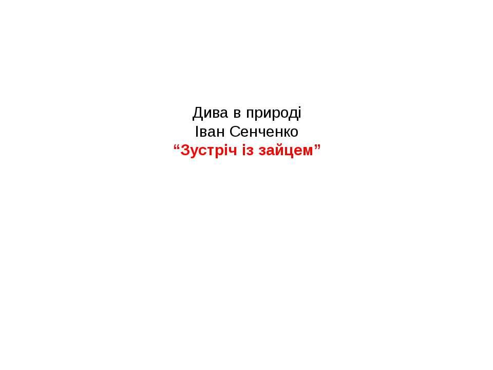"""Дива в природі Іван Сенченко """"Зустріч із зайцем"""""""