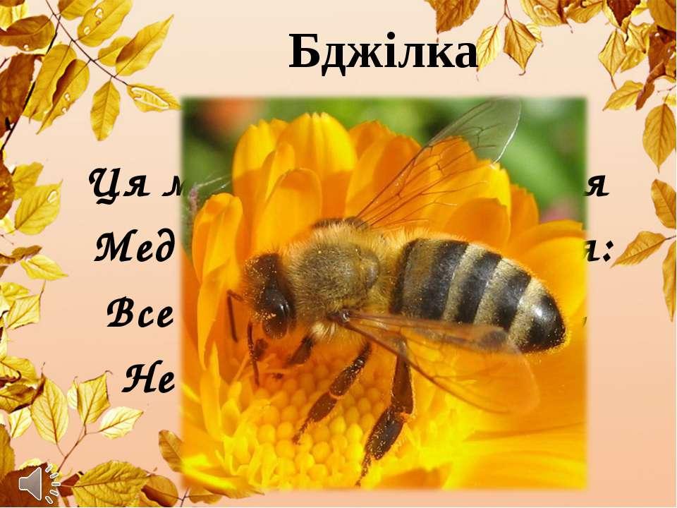 Бджілка Ця маленька трудівниця Мед збирає як годиться: Все у вулик, все у сот...