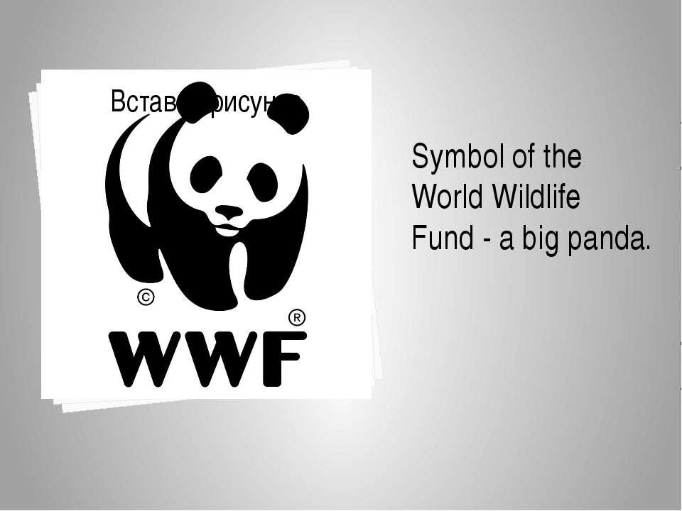 Symbol ofthe World Wildlife Fund-a bigpanda.