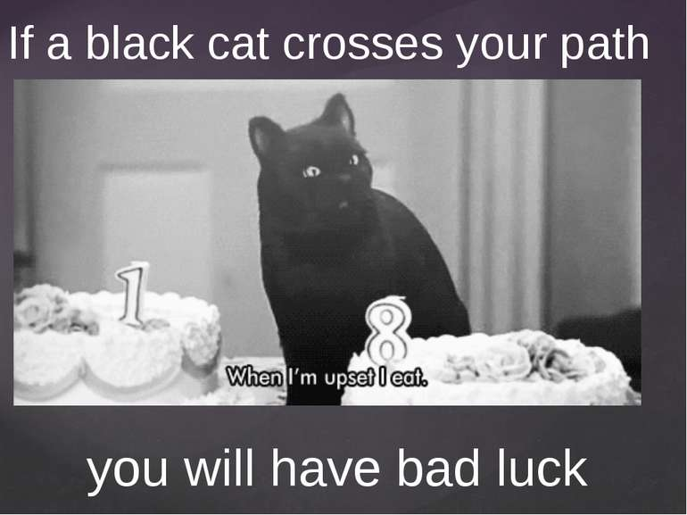 If a black cat crosses your path you will have bad luck