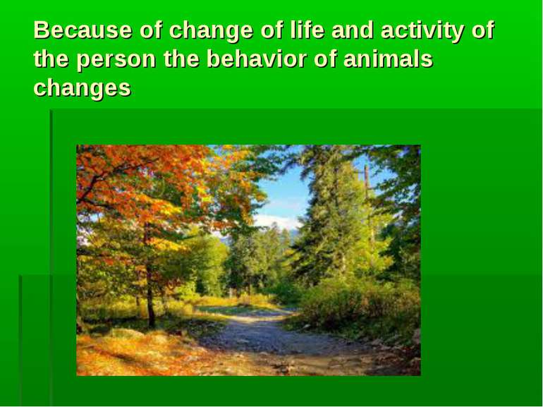 Because of change of life and activity of the person the behavior of animals ...
