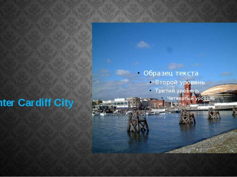 Сenter Сardiff City