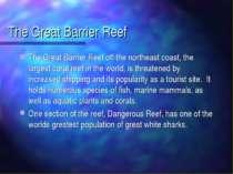 The Great Barrier Reef The Great Barrier Reef off the northeast coast, the la...