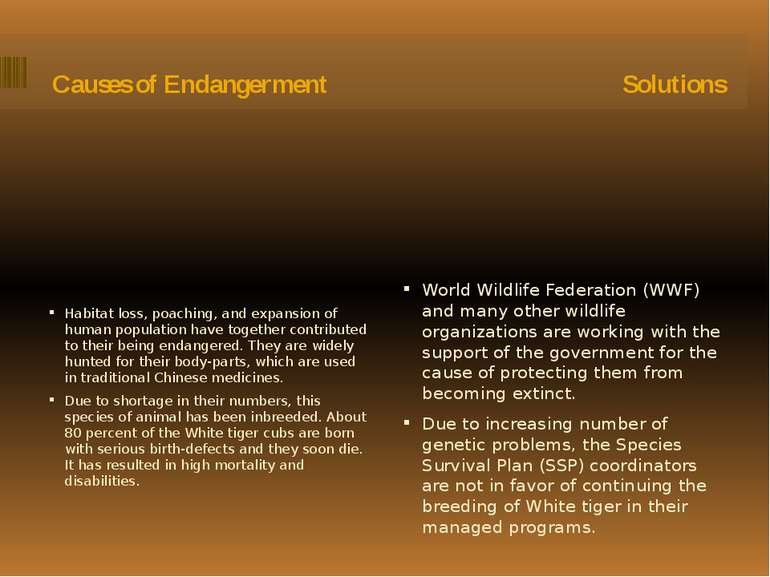 Causes of Endangerment Solutions Habitat loss, poaching, and expansion of hum...