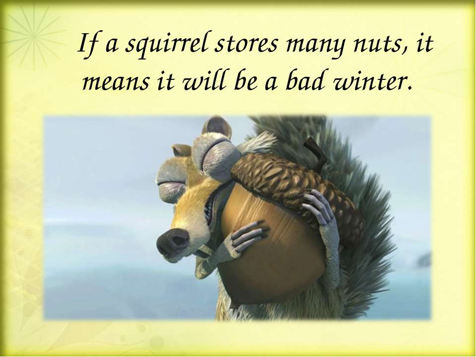 If a squirrel stores many nuts, it means it will be a bad winter.