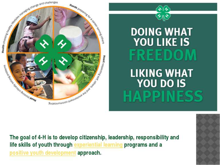The goal of 4-H is to develop citizenship, leadership, responsibility and lif...