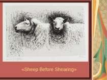 «Sheep Before Shearing»