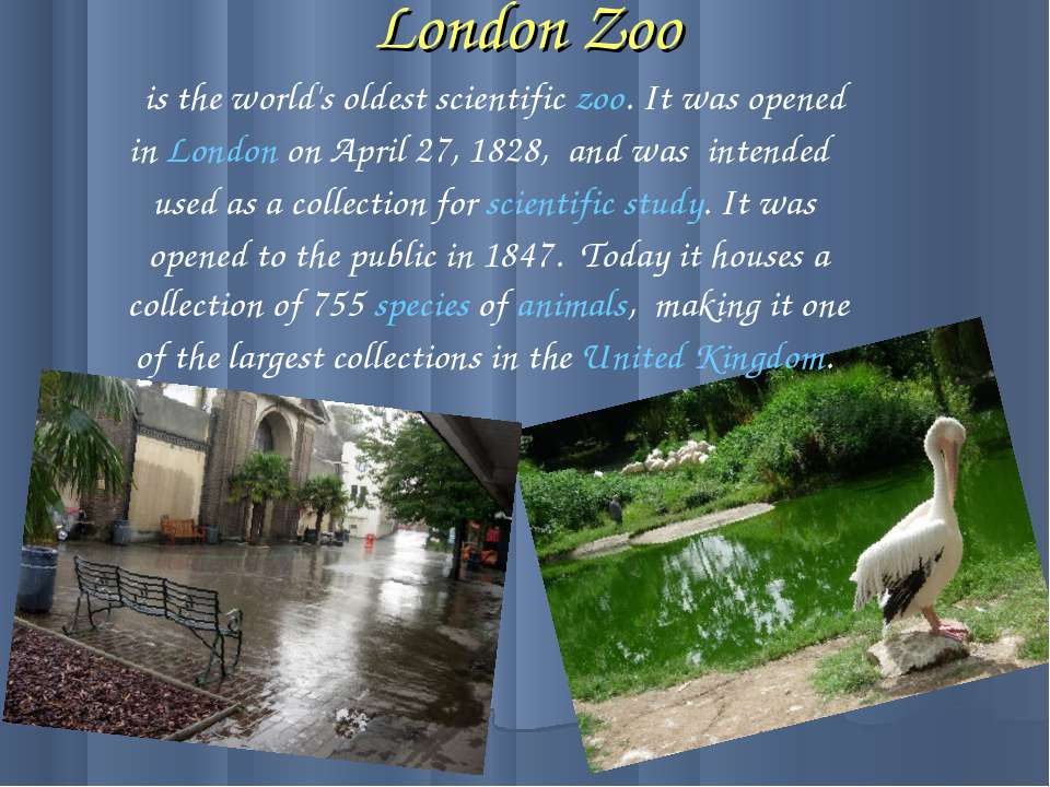 London Zoo is the world's oldest scientific zoo. It was opened in London on A...