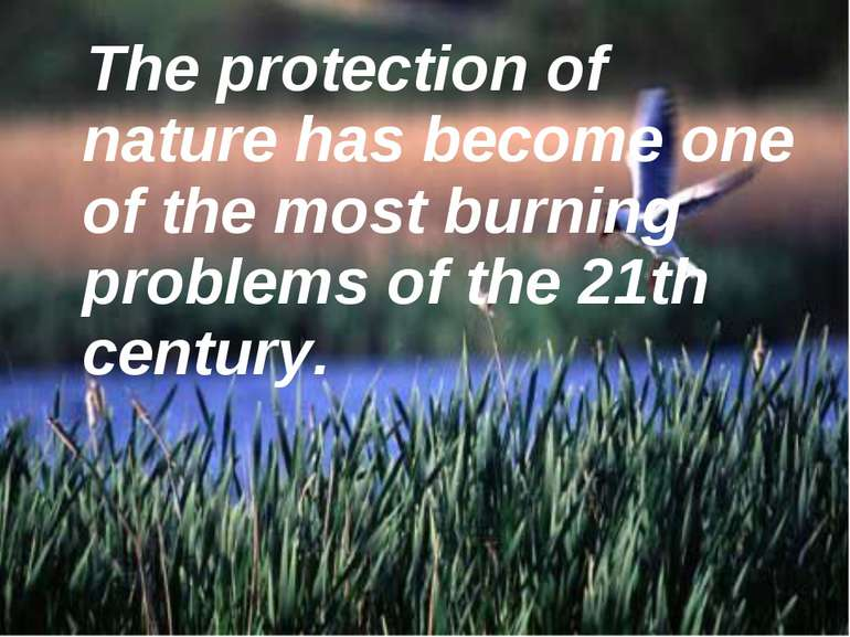 The protection of nature has become one of the most burning problems of the 2...