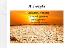 A drought