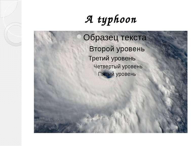 A typhoon