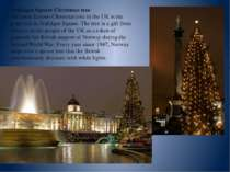 Trafalgar Square Christmas tree The most famous Christmas tree in the UK is t...