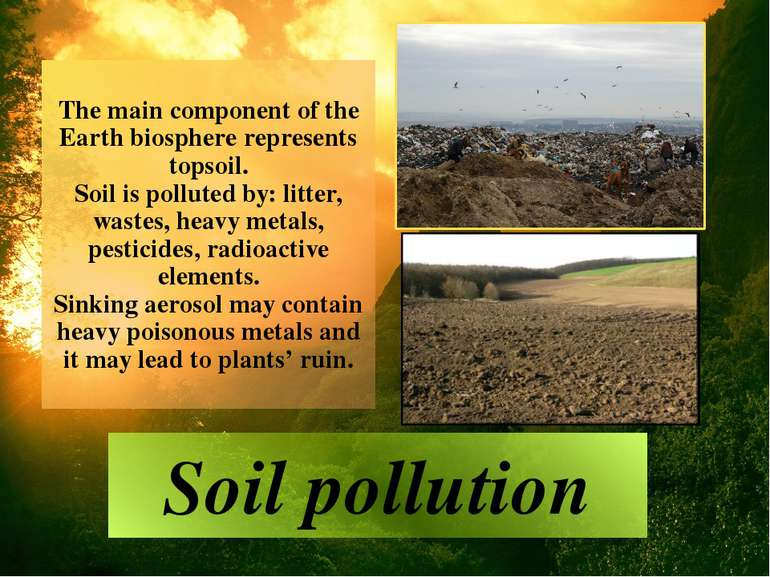 The main component of the Earth biosphere represents topsoil. Soil is pollute...