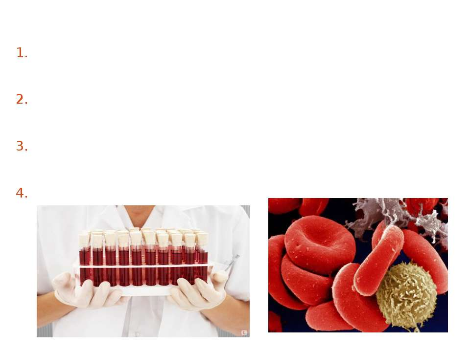 There are four blood types: no agglutinogens and agglutinins from both - (0) ...