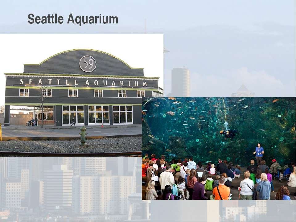 Seattle Aquarium