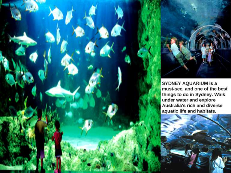 SYDNEY AQUARIUM SYDNEY AQUARIUM is a must-see, and one of the best things to ...