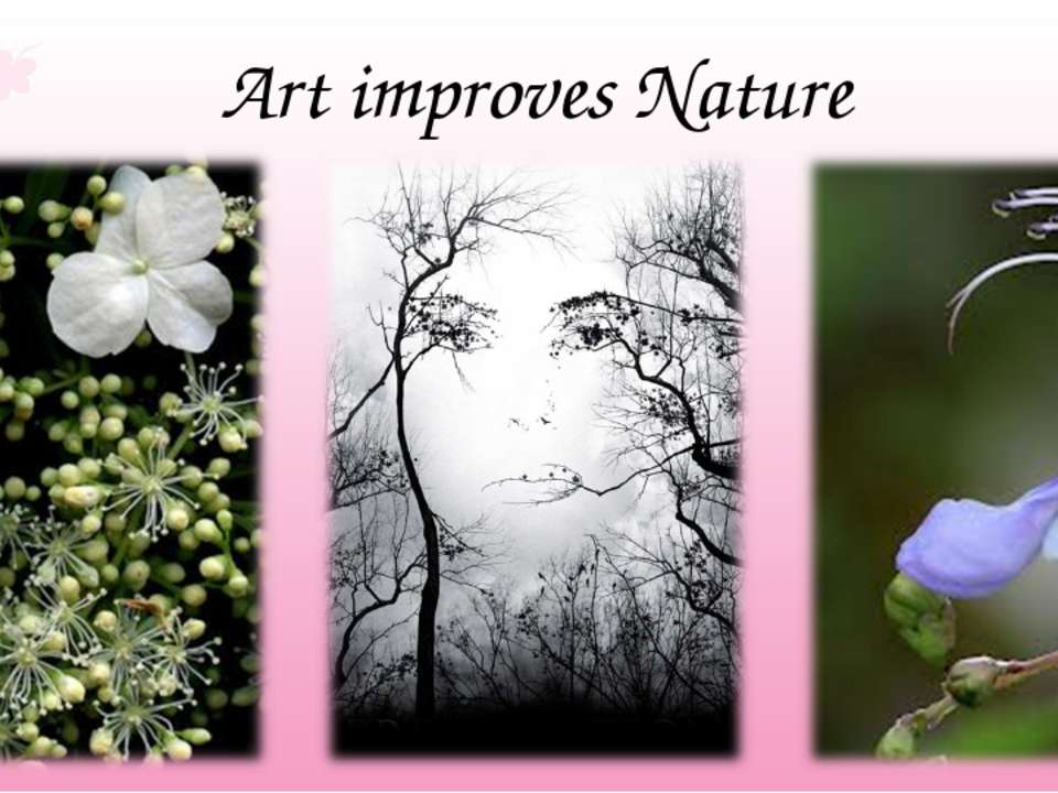 Art improves Nature