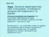 Урок №1 Тема: Загальна характеристика типу Голкошкірих. Особливості процесів ...
