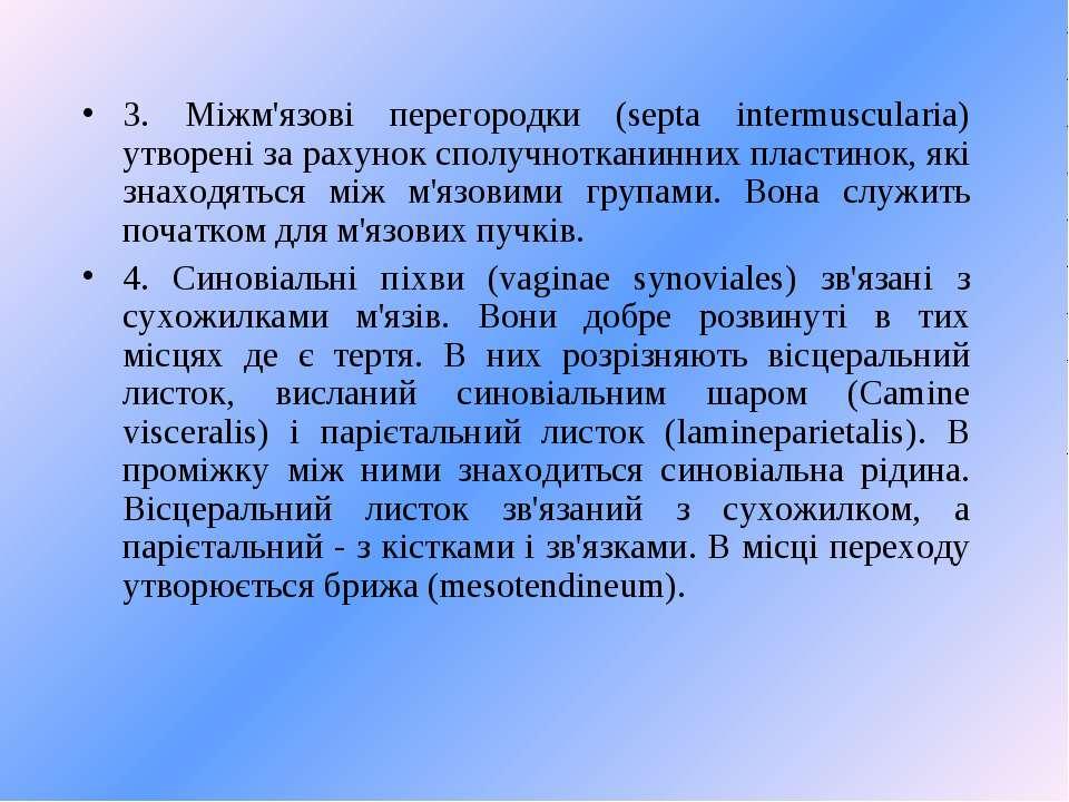 3. Міжм'язові перегородки (septa intermuscularia) утворені за рахунок сполучн...