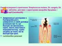 Кислотоутворюючі стрептококи: Streptococcus mutans, Str. sanguis, Str. mitis,...