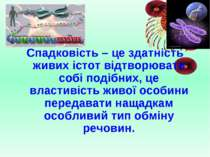 Спадковість – це здатність живих істот відтворювати собі подібних, це властив...
