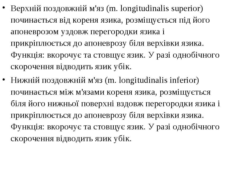 Верхній поздовжній м'яз (m. longitudinalis superior) починається від кореня я...