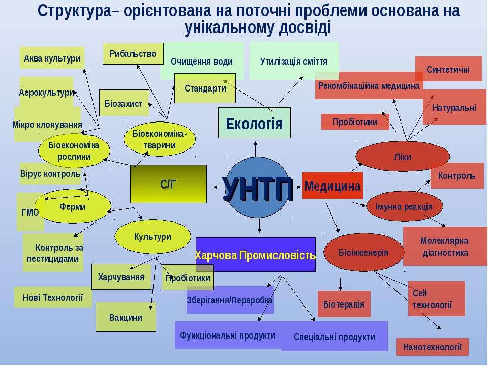 Структура– орієнтована на поточні проблеми основана на унікальному досвіді УНТП