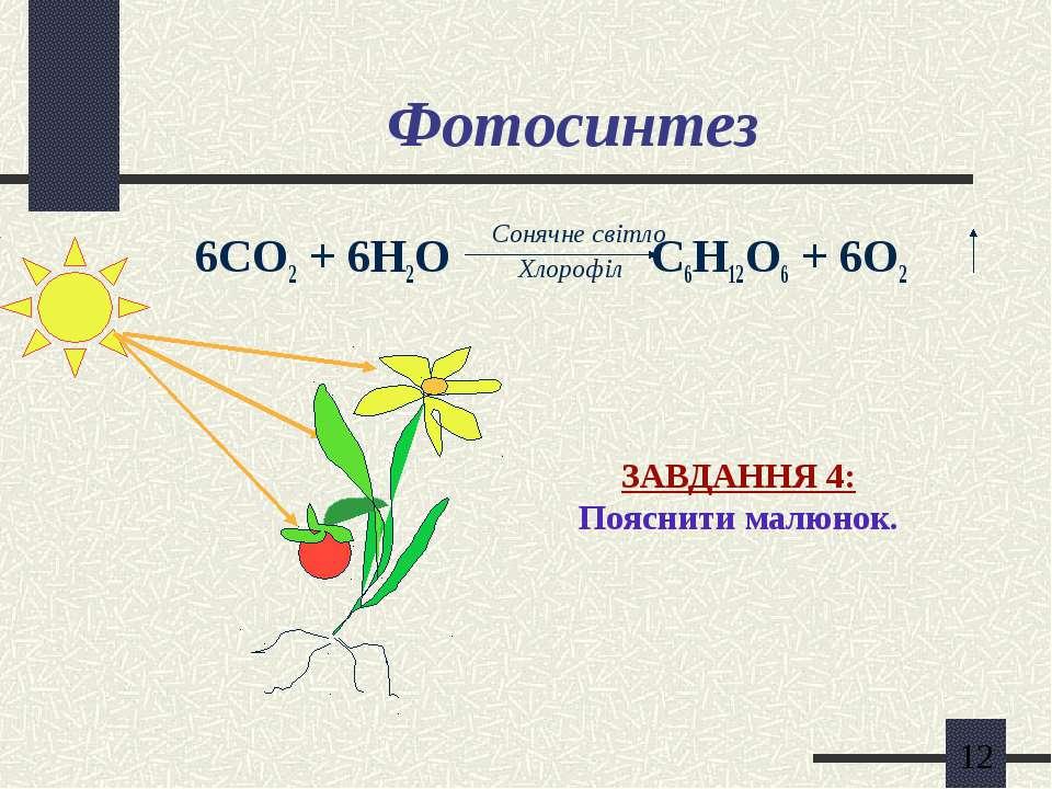 Фотосинтез 6СО2 + 6Н2О С6Н12О6 + 6О2 Сонячне світло Хлорофіл ЗАВДАННЯ 4: Пояс...