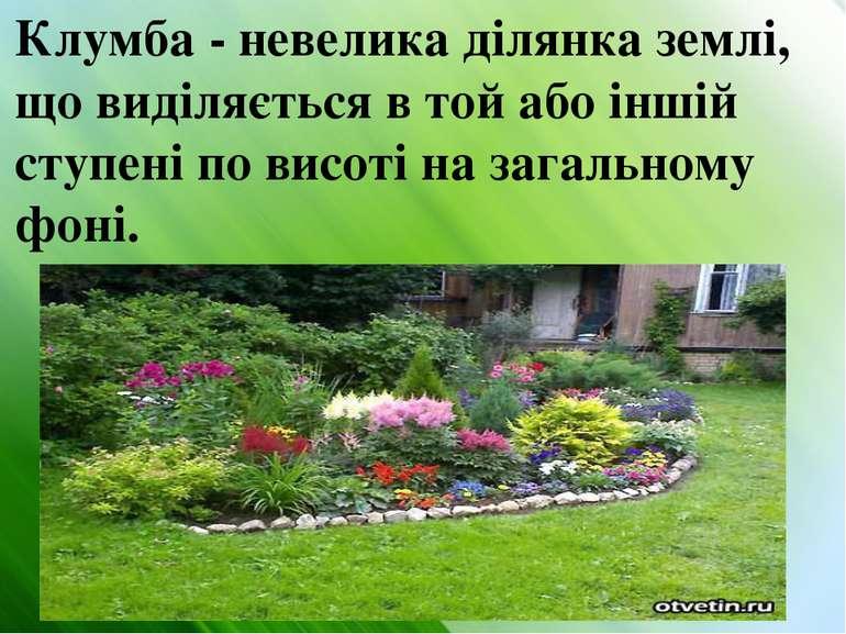 Клумба - невелика ділянка землі, що виділяється в той або іншій ступені по ви...