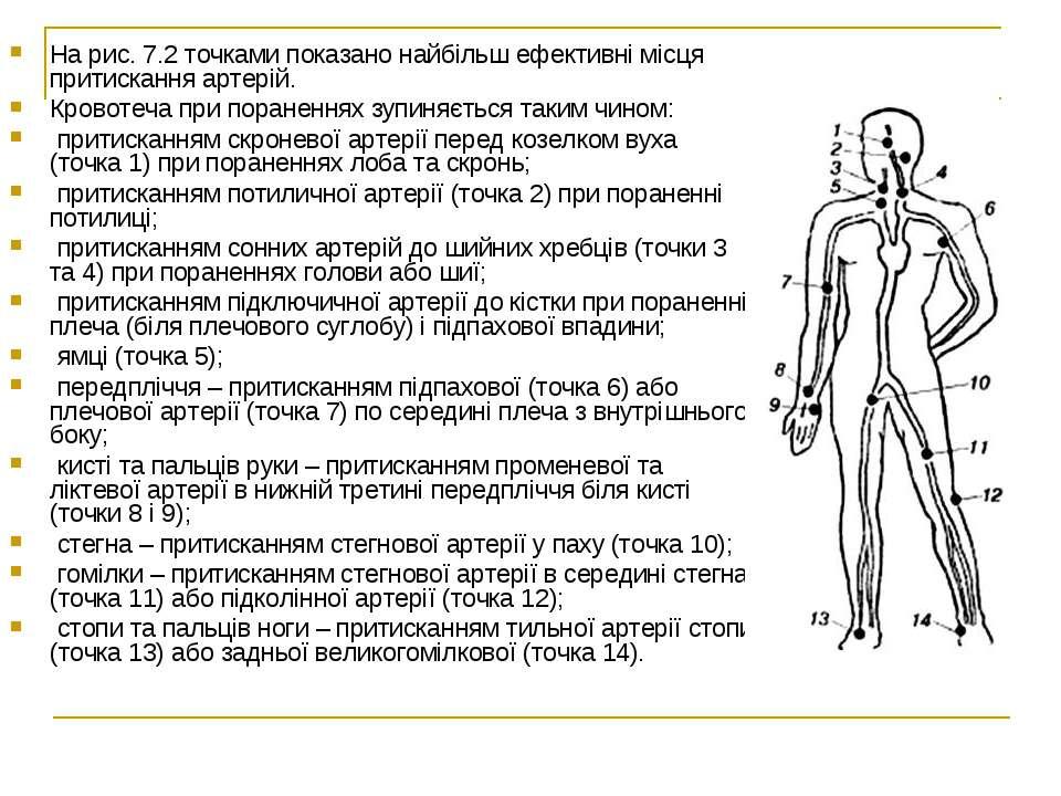На рис. 7.2 точками показано найбільш ефективні місця притискання артерій. Кр...