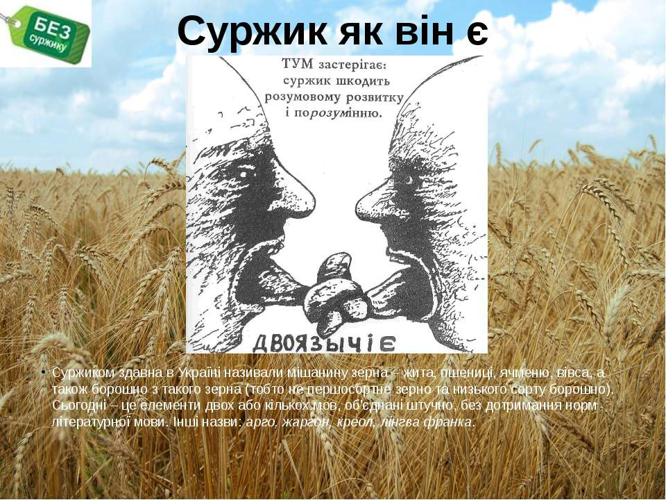 Суржик як він є Суржиком здавна в Україні називали мішанину зерна – жита, пше...
